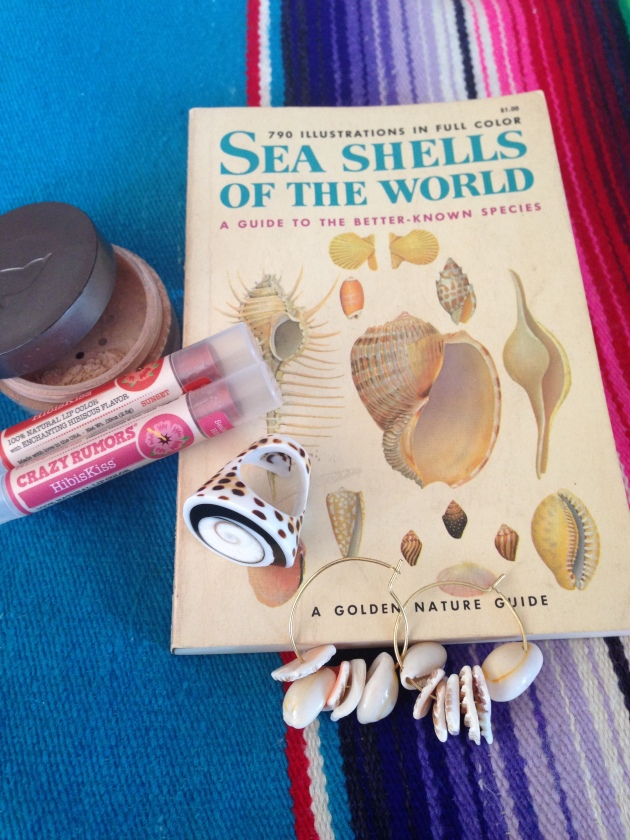 blog_seashells_roundup