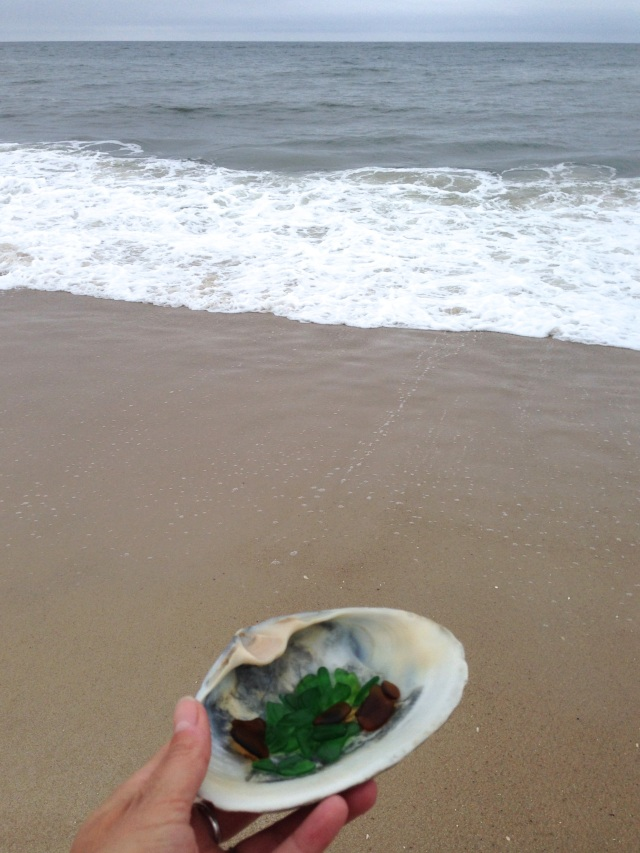 beach_glass_shell_ocean