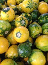 round_zucchini_yellow_green